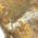 その形成過程が想像できるような露出したオパール層。